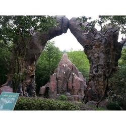 上海园林绿化