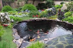 庭院锦鲤鱼池建造