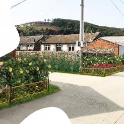 美丽乡村设计景区规划设计